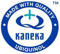 kaneka_logo